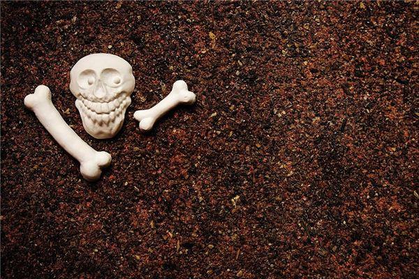 [Traum Weissagung] Die Bedeutung und das Symbol von Knochen, die in Träumen erscheinen