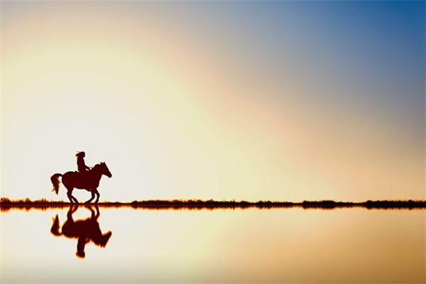 Die Bedeutung und das Symbol des Pferdes, das in Träumen läuft