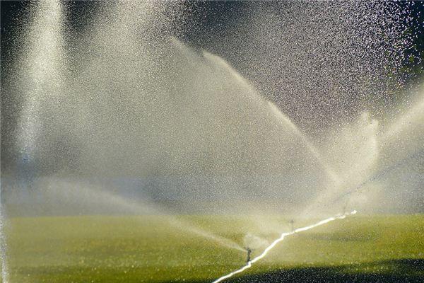 Traumdeutung von Sprinkler