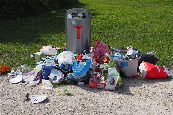 Traumdeutung und Wahrsagerei vom Mülleimer