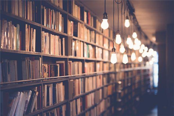 Die Bedeutung der Traumdeutung von Bücherregal