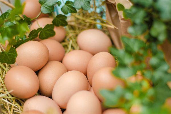 Die Traumdeutung, viele Eier aufzusammeln